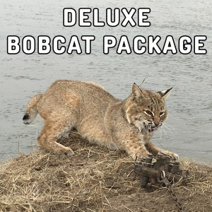 deluxe-bobcat-package