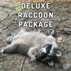 deluxe-raccoon-package