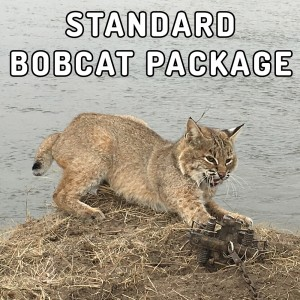 standard-bobcat-package