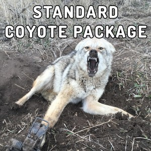 standard-coyote-package