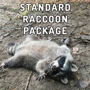 standard-raccoon-package